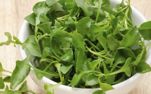 Watercress Health Benefit