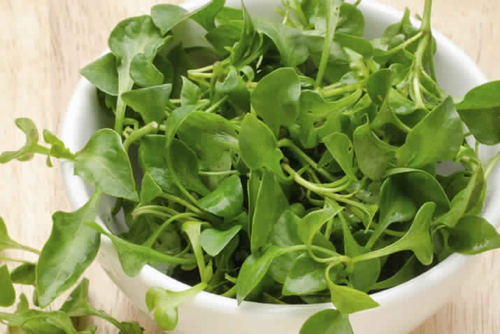 Watercress Health Benefit