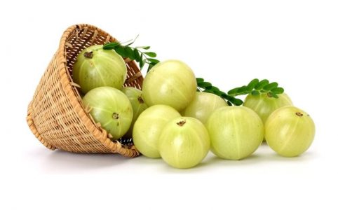 health benefit of amla
