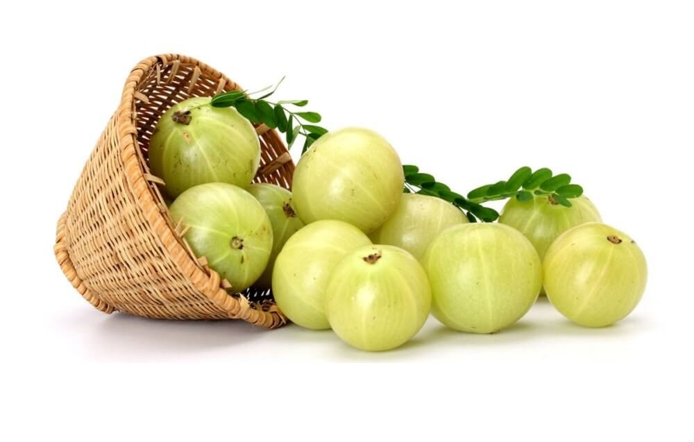health benefit of amla