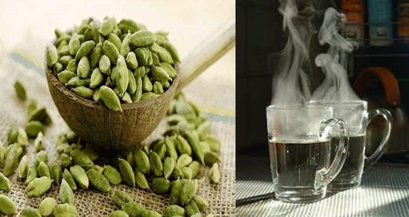 great-benefits-of-drinking-hot-water-with-cardamom
